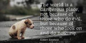 Turn a Blind Eye defined by Albert Einstein